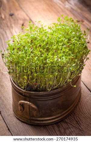 Cress in a copper container on wooden table.