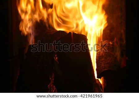 Crest of flame on burning wood in fireplace close up
