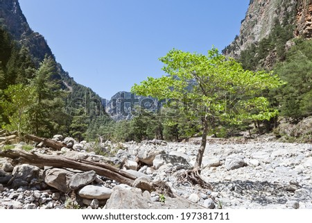 Crete - Greece - Quietness of the Samaria Gorge - stock photo