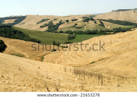 Crete senesi, characteristic landscape in Val d'Orcia (Siena, Tuscany, Italy) along the road from Asciano to Torre a Castello