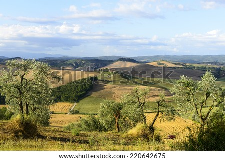 Crete senesi, characteristic landscape in Val d'Orcia (Siena, Tuscany, Italy), at summer. - stock photo