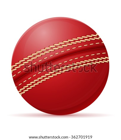 cricket ball illustration isolated on white background