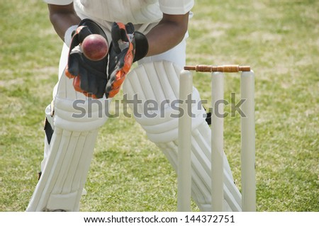 Cricket wicketkeeper catching a ball behind stumps - stock photo