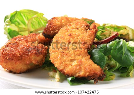 Crispy chicken tenders  - stock photo