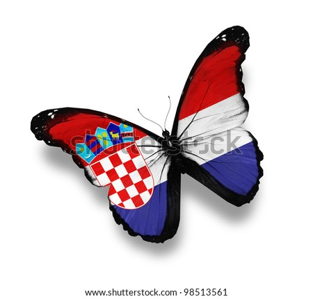 Croatian flag butterfly, isolated on white - stock photo