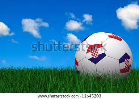 Croatian soccer ball laying on the grass