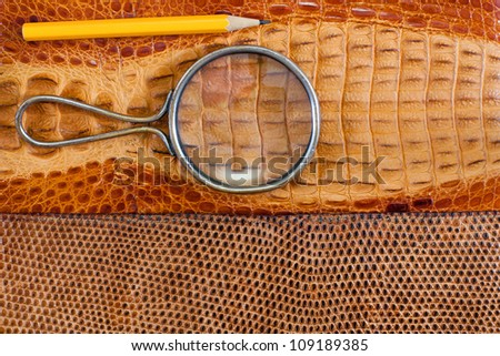 Crocodile and snake leather texture with magnifying glass, pencil - stock photo