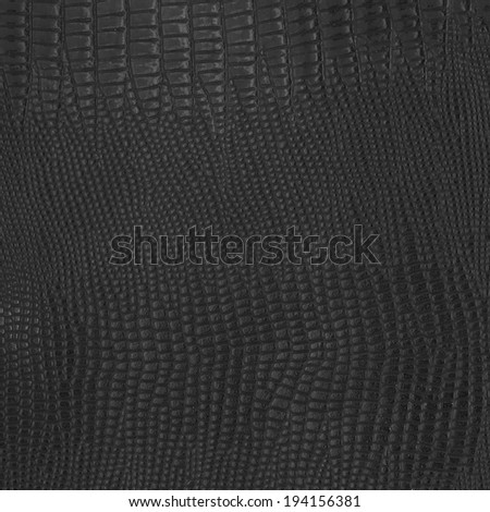 "Crocodile bone skin texture background. This image of Freshwater Crocodile ""Crocodylus siamensis"".Thi s skin is very classic and beauty. - stock photo"