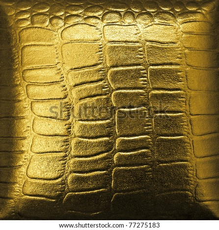 Crocodile golden leather - stock photo