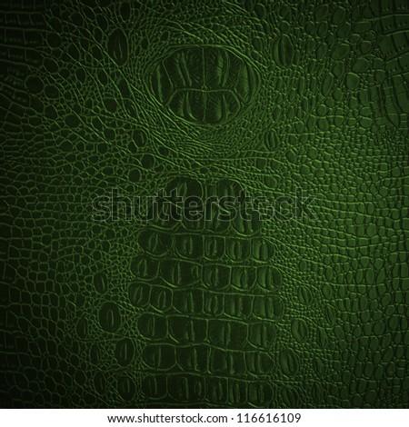 crocodile green leather - stock photo