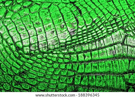 Crocodile green leather, can use as background
