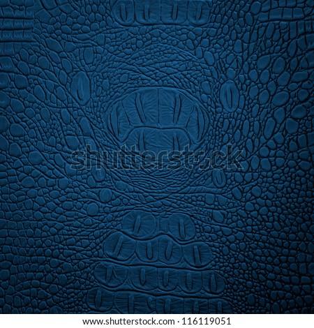 crocodile leather blue - stock photo