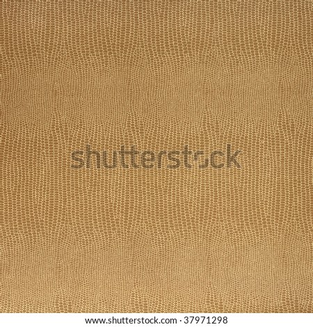crocodile leather texture for background. High resolution - stock photo