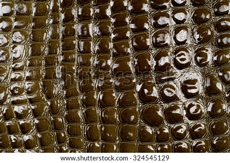 crocodile skin texture, background, green marsh pattern. Lacquered - stock photo