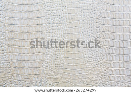 Crocodile skin white leather texture background - stock photo