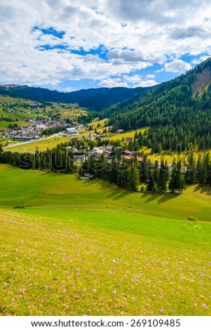 Crocus flowers on meadow and view of alpine village on sunny day, Dolomites Mountains, Italy - stock photo