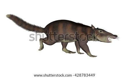Cronopio dentiacutus prehistoric mammal walkunig isolated in white background - 3D render - stock photo