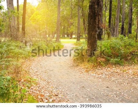 Crooked walkway at sunset in golf course - stock photo
