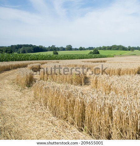Crop Circle pattern in wheat field. Ground View, Raisting, Germany,  July 2014 - stock photo