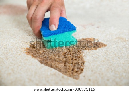 Cropped image of male janitor cleaning stain on carpet with sponge - stock photo