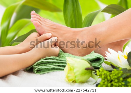 Cropped image of masseuse massaging woman's foot against leaves at spa - stock photo