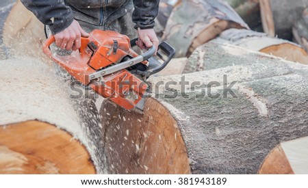 Cropped image of worker using chainsaw on wood