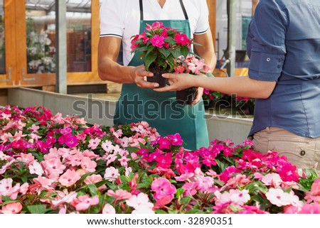 cropped view of woman shopping in flower shop - stock photo