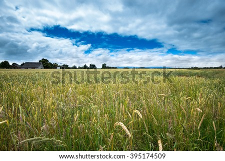 Crops of hay in the fields around LLanquihue Lake, Chile - stock photo