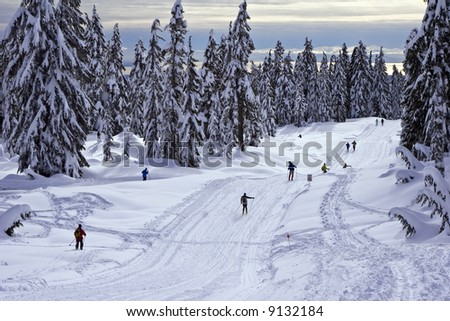 Cross-country ski and snowshoe trails - stock photo