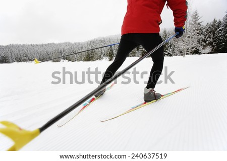 Cross Country Skier - stock photo