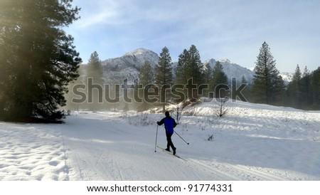 Cross country skier - stock photo