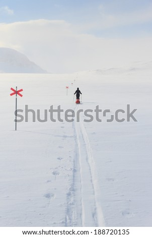 Cross country skier with pulka in the snow in Sweden, Kungsleden in Lapland. - stock photo