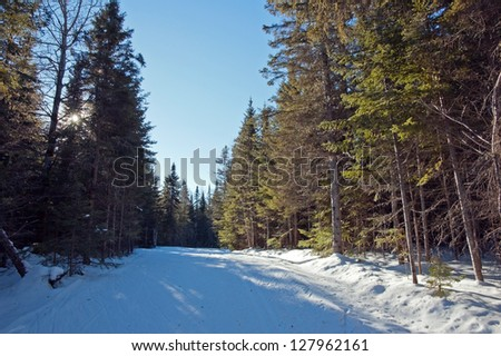 cross country skiing. free style track. Mont Saint-Anne, Quebec, Canada - stock photo
