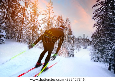 Cross-country skiing in Sweden - stock photo