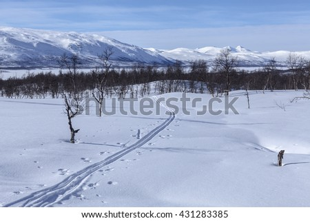 Cross country tracks on a mountainside. Newly fallen snow and sunshine. Mountains in the background. - stock photo