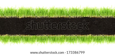 Cross-section frame of soil and grass isolated on white  - stock photo