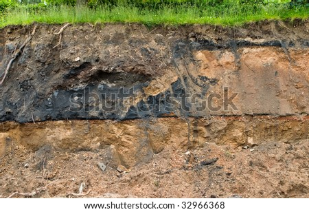 Cross section from a piece of turf - stock photo