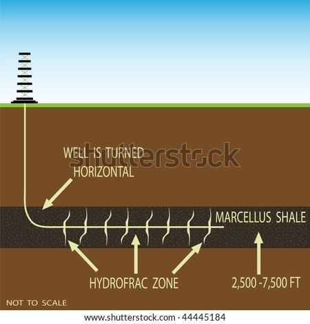 Cross section of a horizontal drill in Marcellus  shale.