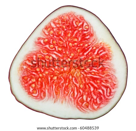 Cross-section of fig tree fruit isolated on white - stock photo