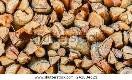 Cross section of the timber for the background. - stock photo