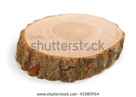 Cross section of tree trunk showing growth rings on white  background - stock photo
