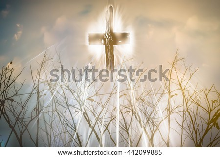 Cross with light and branch,Faith belief and hope concept - stock photo