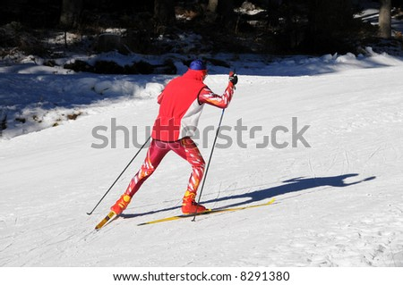 Crosscountry run - stock photo