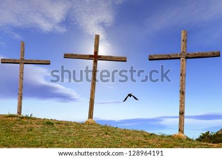 Crosses for a crucifix