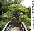 Crossing a wooden bridge in a Japanese style garden. - stock photo