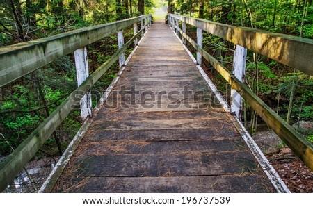 Crossing Over. Wooden bridge traverses a forested ravine. Lexington, Michigan.  - stock photo