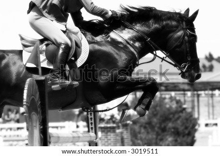Crossing The Hurdle – Equestrian Theme (B&W, shallow focus) - stock photo