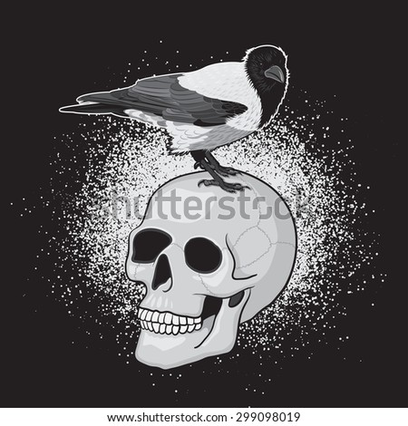 Crow Bird on the Human Skull with Black Background - stock photo