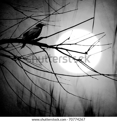 crow on a branch in moonlight - stock photo