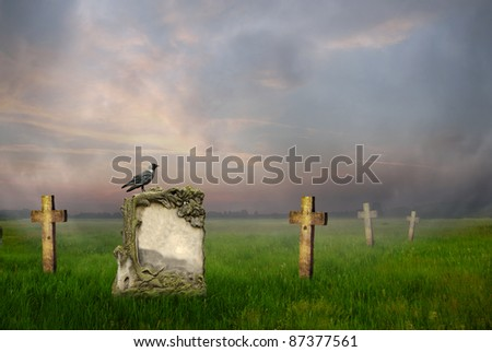 Crow sitting on a gravestone at sunrise - stock photo
